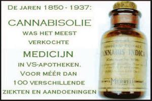 cannabis tegen alledaagse kwalen